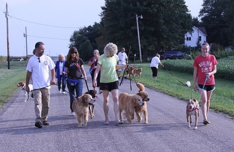 Group walk!